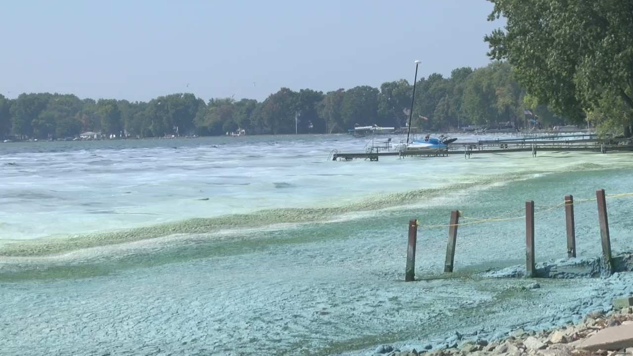 Lake Winnebago Algae Bloom