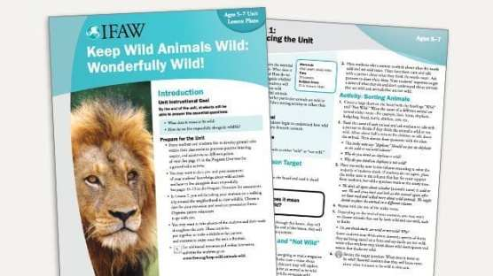 Grades K-2: Keep Wild Animals Wild - Lesson Plan