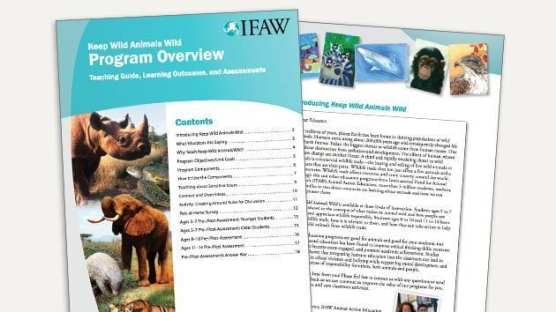 Keep Wild Animals Wild Teaching Guide