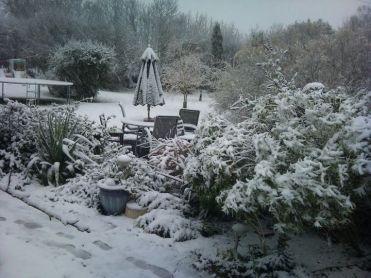 garden-snow