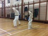 kyler-learns-karate016