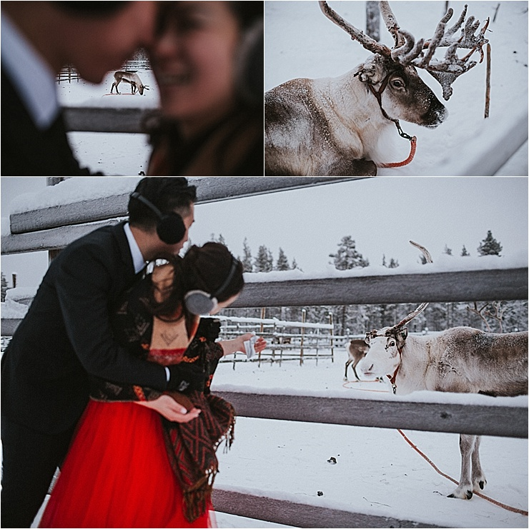 Bride and groom visit a reindeer farm in Finland by Maria Hedengren Photography
