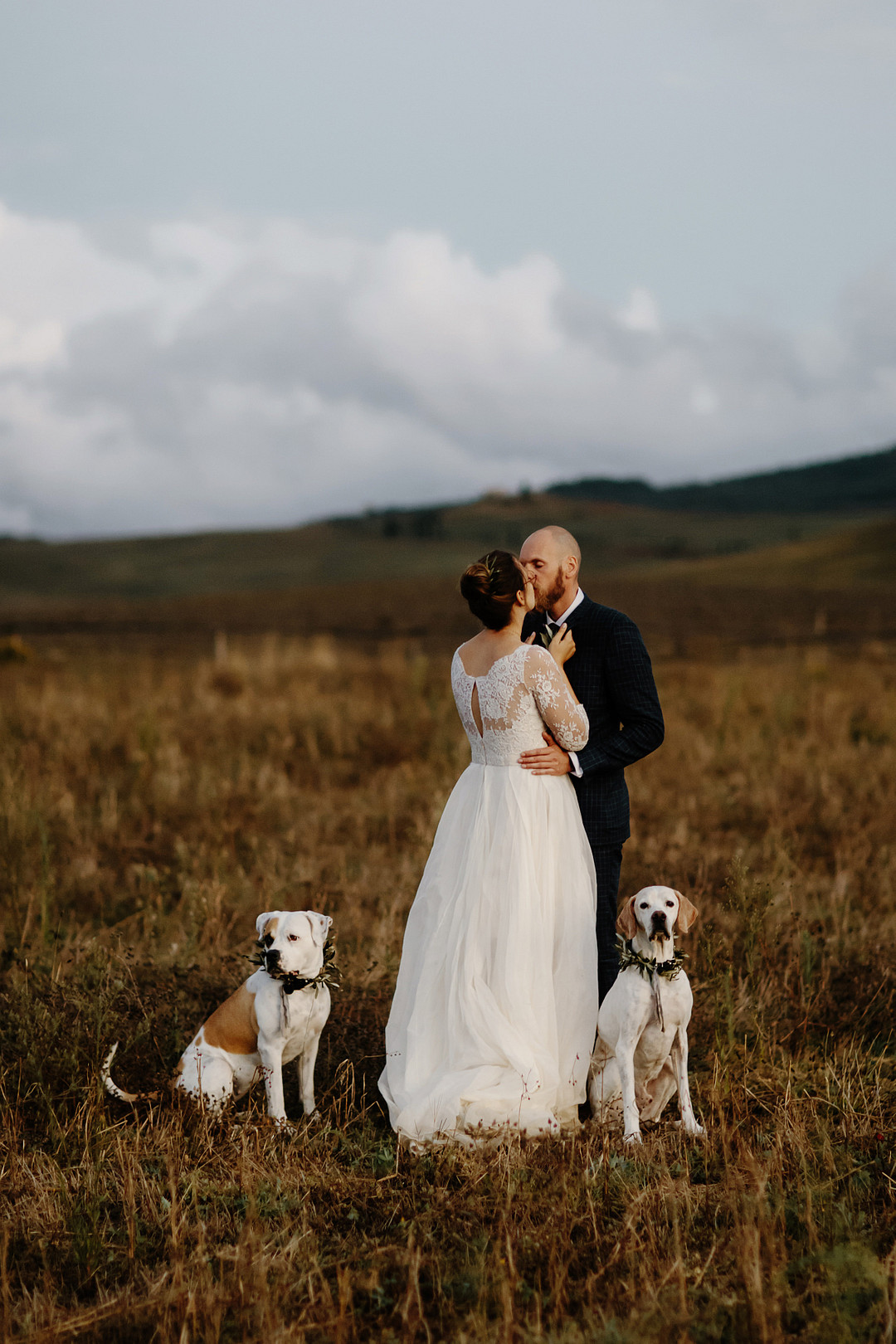 Bride and groom with their dogs wedding in Tuscany