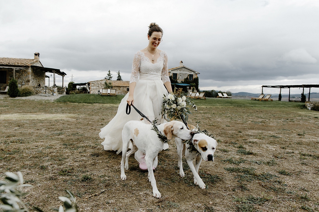 Bride walking down the aisle with her dogs