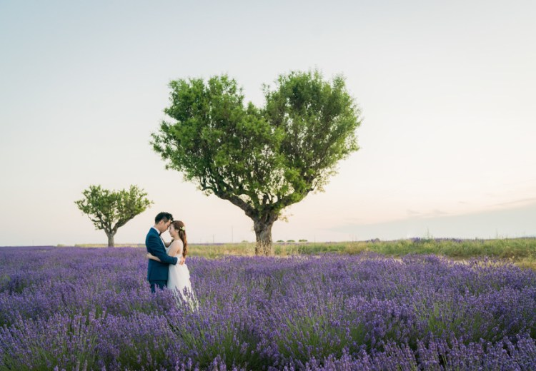 commitment ceremony in the lavender fields
