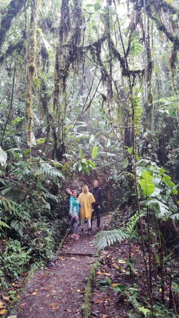 2. Monteverde - Santa Elena Cloud Forest