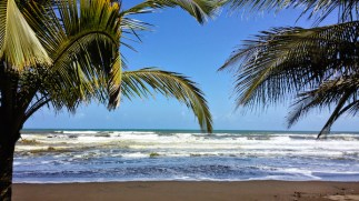 Tortuguero strand