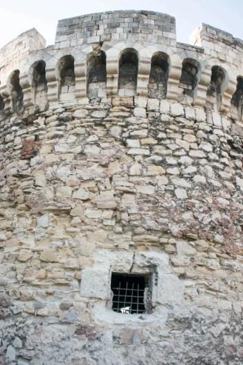 Belgardo toren