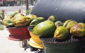 Kokosnoten Arawak Cay