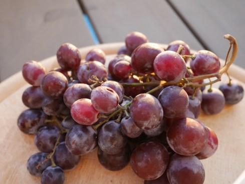 Druiven Kreta