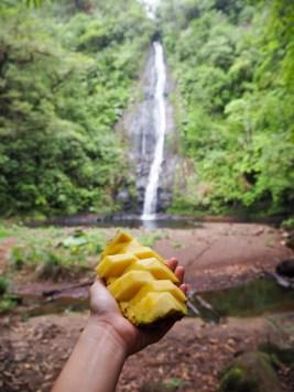 El Silencio lodge spa in Costa Rica watervallen-3