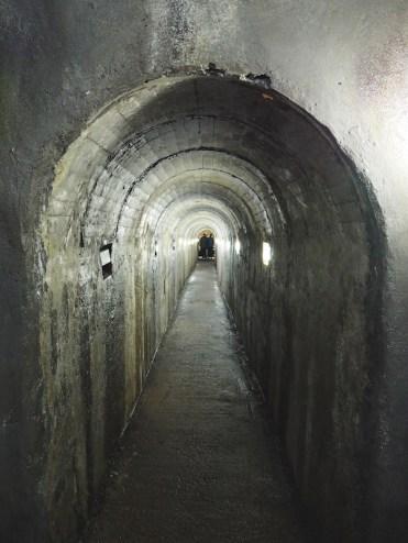 Entree-Algar-do-Carvao-grotten-terceira