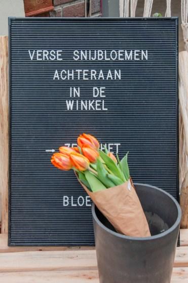 Fleur_de_Lies_oostende