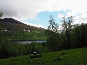 hiken bij Ammernäs in Zomer zweeds lapland