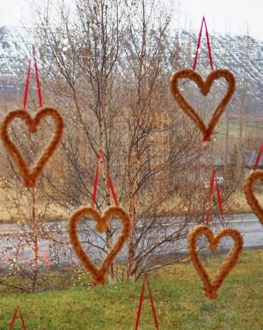 IJsland liefde