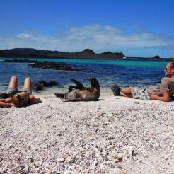 Luieren met zeeleeuwen, Sombrero Chino