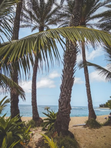 Oahu surfers kijken North Shore Hawaii-2