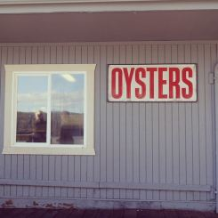 Oyster farm oregon