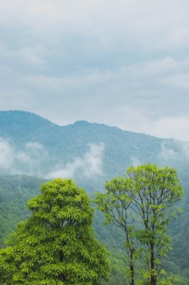 Poon Hill trekking Nepal trek_-4