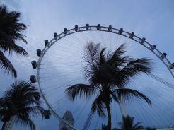 Singapore by night reuzenrad