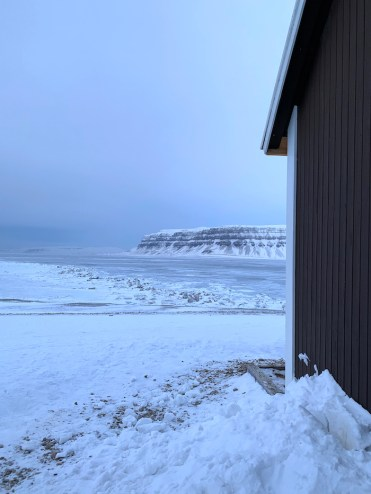Spitsbergen met sneeuwscooter zien
