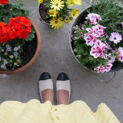 Summershoes van sacha