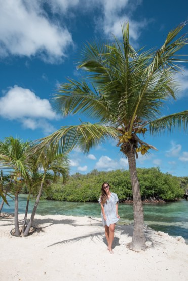 Vakantie Aruba palmbomen strandjes