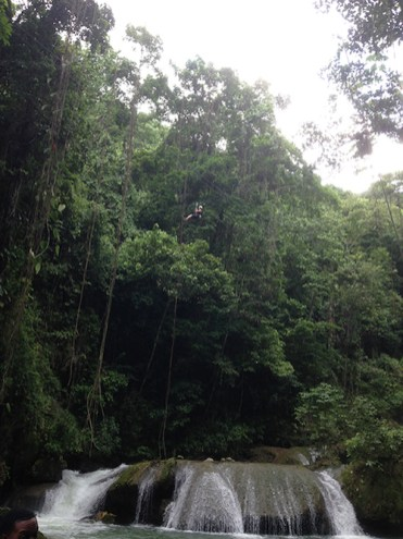 YS Falls Jamaica waterval liaan