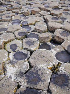 basalten giant causeway