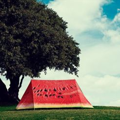 bijzondere tenten