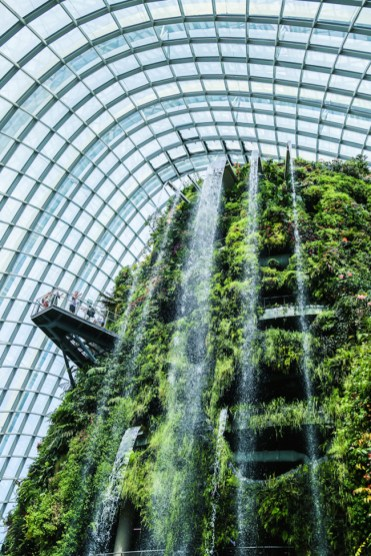 cloud forest singapore waterval