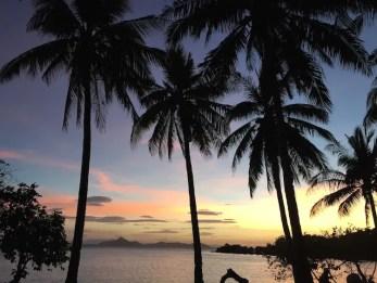 filipijnen palmbomen zonsondergang