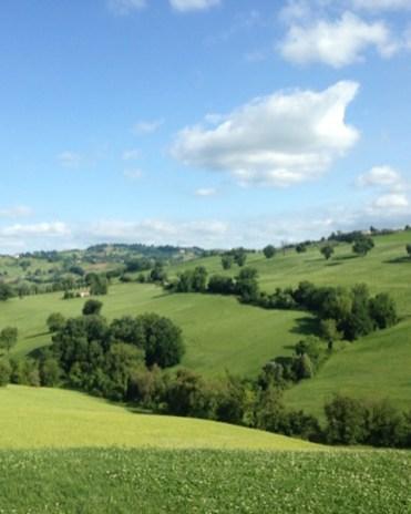 groen landschap italie