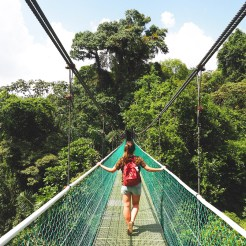 hangbruggen in costa rica jungle zip lining sky adventures