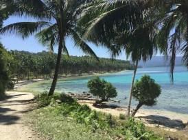 palmbomen strand filipijnen backpacken