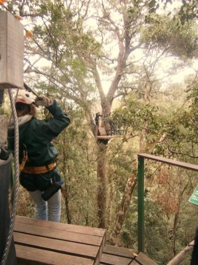 Ziplinen garden route zuid afrika