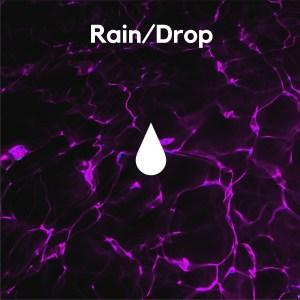 https://i2.wp.com/www.weareumbrela.com/wp-content/uploads/2019/02/Raindrop-January-1.jpg?resize=300%2C300&ssl=1