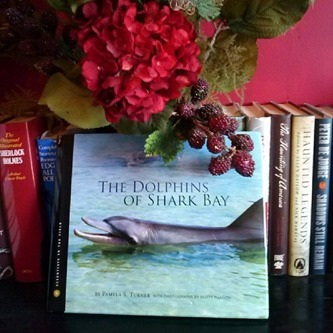 The Dolphins of Shark Bay (Scientists in the Field Series) by Pamela S. Turner