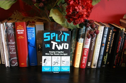 Split In Two: Keeping it Together When Your Parents Live Apart by Karen Buscemi