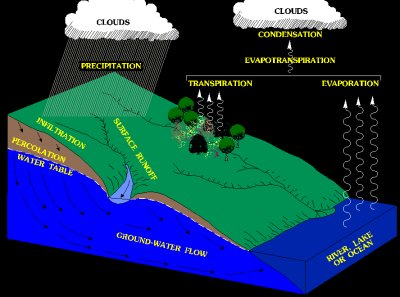 Simplified Hydrologic Cycle