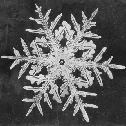 Photo of an individual snowflake circa Winter 1901-02 by Wilson Bentley.                   Credit: Wilson Bentley/Smithsonian Institution Archives