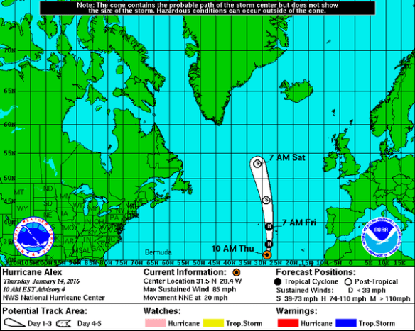 Hurricane Alex's forecast track. Credit: NOAA/NHC