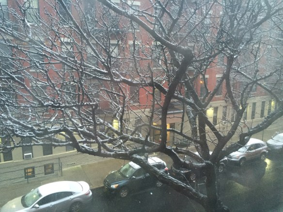 First Snowfall of the season in NYC