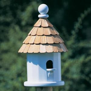 Small Shingled House-0