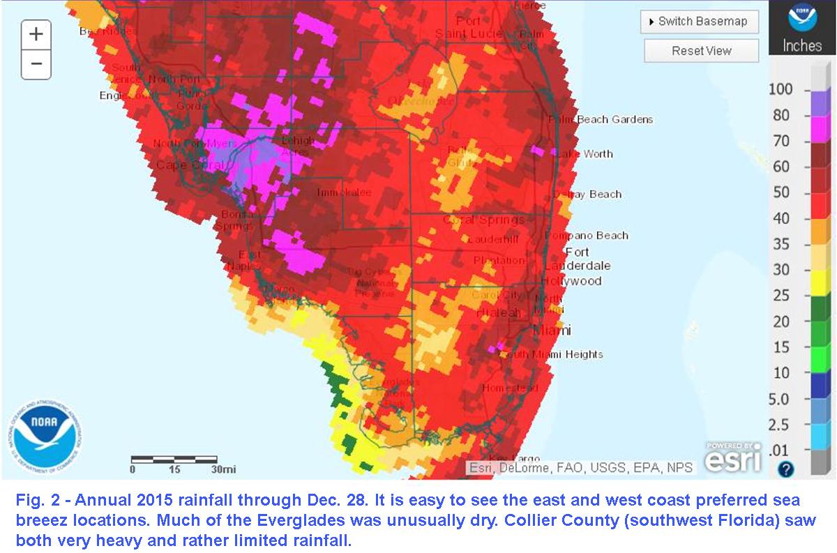 Florida Rainfall Map.Theweathermogil South Florida 2015 Recap Hot With Rainfall