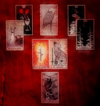 WildCompassionWeaverTarot