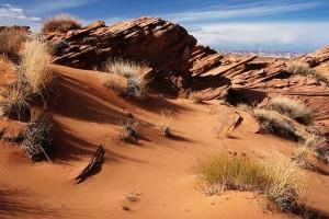 desert2_OPT