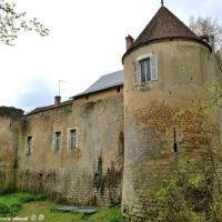 Château de la Maison Fort - Forteresse de la Maison Fort