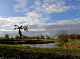 Petite marre et éolienne de Chanteloup Nièvre Passion