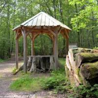 Le tombeau du chêne Babaud - La forêt des Bertranges